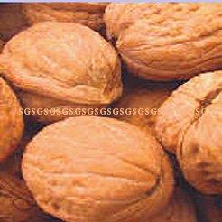 Walnut Whole